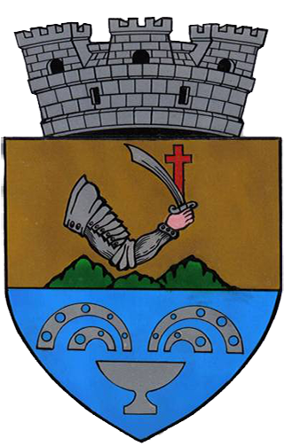 Site-ul Oficial al Primăriei Orașului Băile Olănești